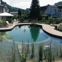Naravni bazeni - 1618079108