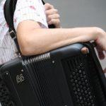 Harmonikar-Riki---instrumentalist--14811068530