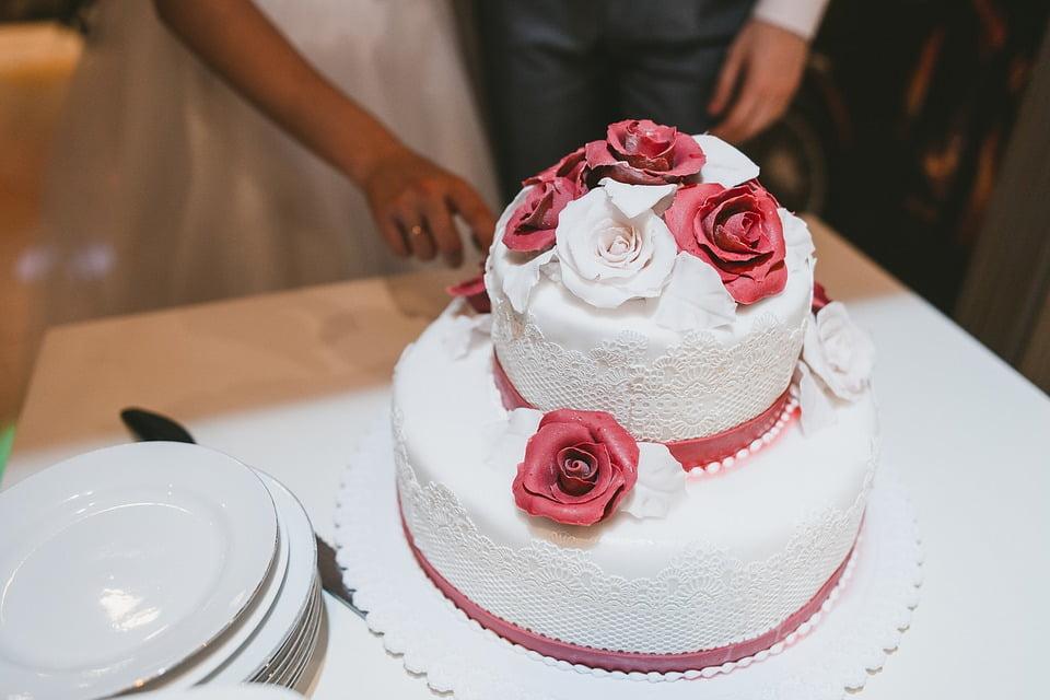 torta 101