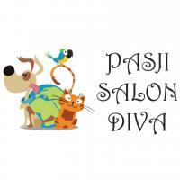 pasji-salon-diva-logo