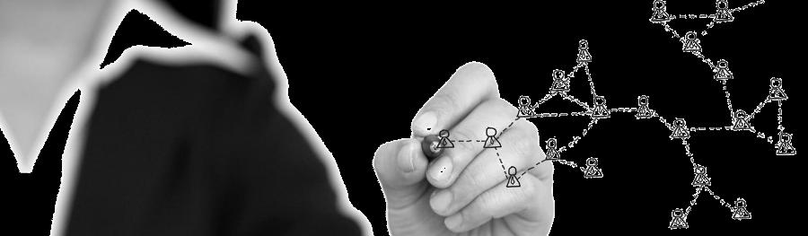 Leadership coaching, sales training, human resource development - GROW ADRIATIK