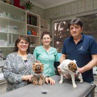 Zdravljenje malih in velikih živali - 1566698529