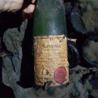Arhivska vina - 1618084520