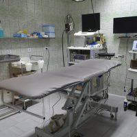 Endoskopiranje - 1618084621