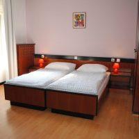 Rooms Tolmin 101