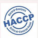 HACCP 100