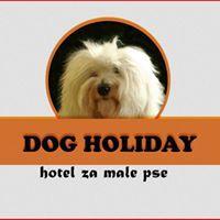 Pasji hotel, hotel za pse 001