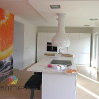 Barvanje stanovanja in beljenje sten - 1618080023