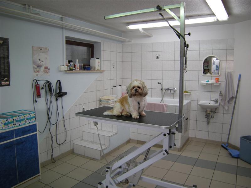 TAČKA salon za nego malih živali 101