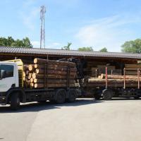 LGZ, lesno gozdarska zadruga, prodaja rezanega lesa, odkup in prodaja hlodovine, izdelovanje lesnih izdelkov, razrez, sušenje, odvoz lesa, Strah, Apače DSC_9077--logo