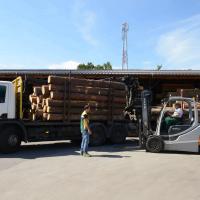 LGZ, lesno gozdarska zadruga, prodaja rezanega lesa, odkup in prodaja hlodovine, izdelovanje lesnih izdelkov, razrez, sušenje, odvoz lesa, Strah, Apače DSC_9086--logo