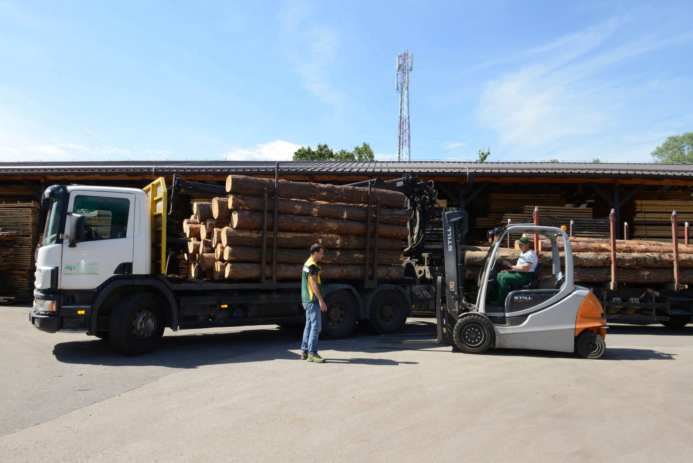 LGZ, lesno gozdarska zadruga, prodaja rezanega lesa, odkup in prodaja hlodovine, izdelovanje lesnih izdelkov, razrez, sušenje, odvoz lesa, Strah, Apače DSC_9086