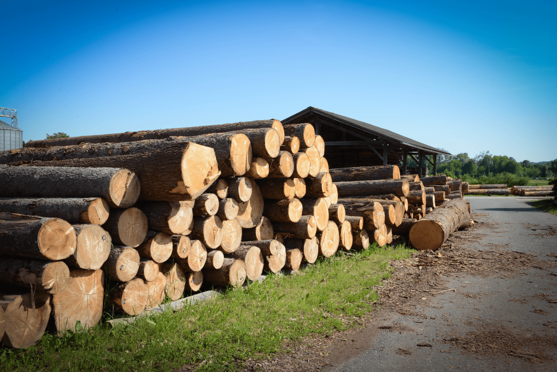 LGZ, lesno gozdarska zadruga, prodaja rezanega lesa, odkup in prodaja hlodovine, izdelovanje lesnih izdelkov, razrez, sušenje, odvoz lesa, Strah, Apače DSC_9199