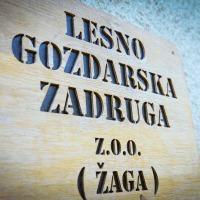 LGZ, lesno gozdarska zadruga, prodaja rezanega lesa, odkup in prodaja hlodovine, izdelovanje lesnih izdelkov, razrez, sušenje, odvoz lesa, Strah, Apače DSC_9209--logo