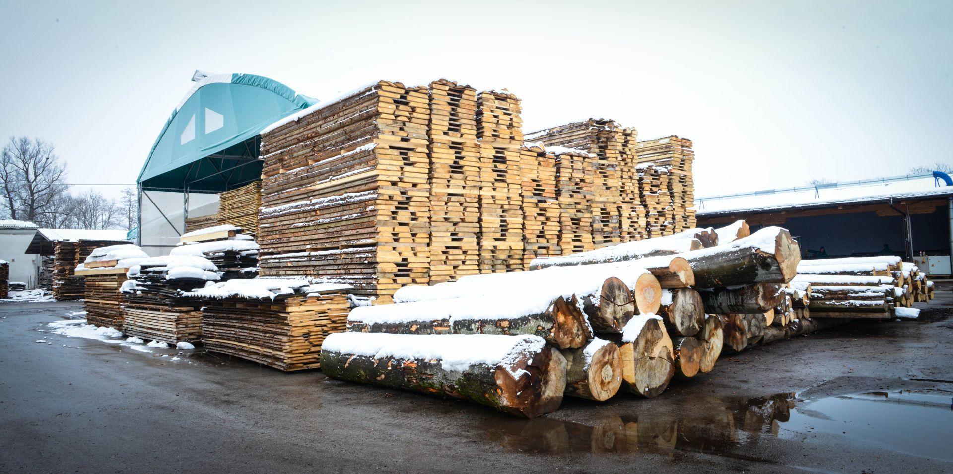 Lesno gozdarska zadruga DSC_2817