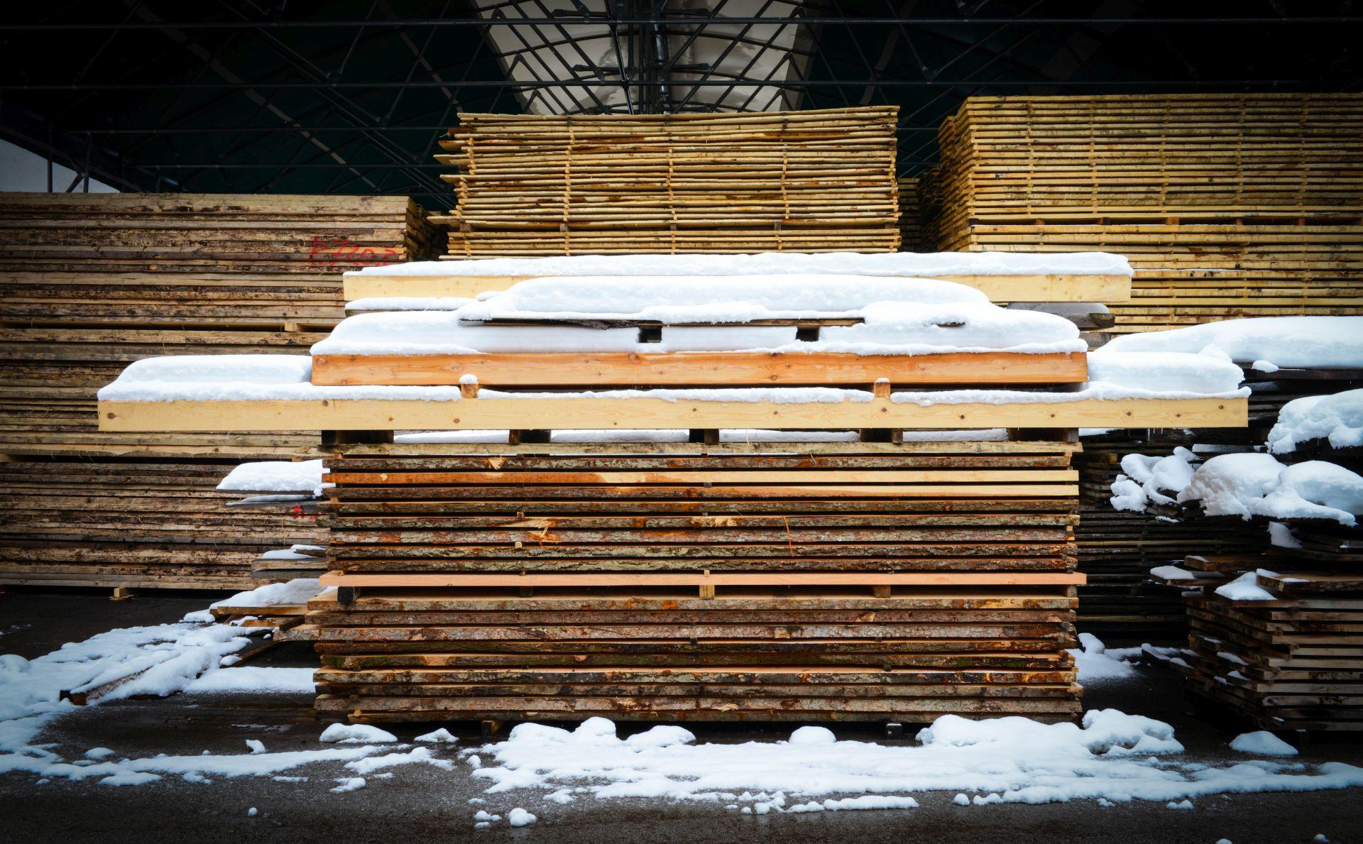 Lesno gozdarska zadruga DSC_2819