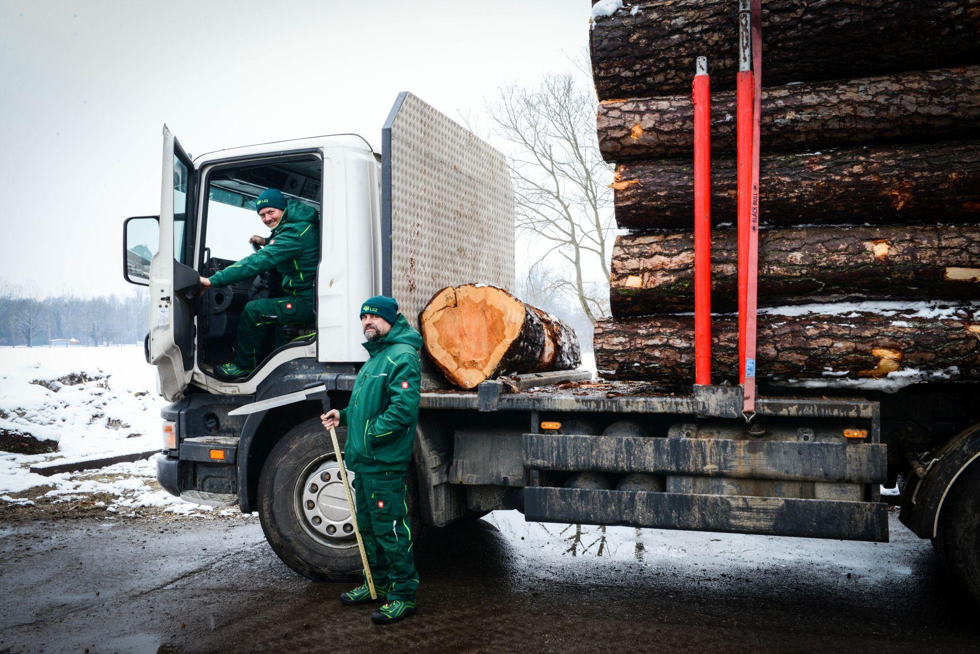 Lesno gozdarska zadruga DSC_2825