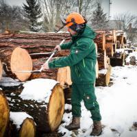 Lesno gozdarska zadruga -DSC_2926--logo