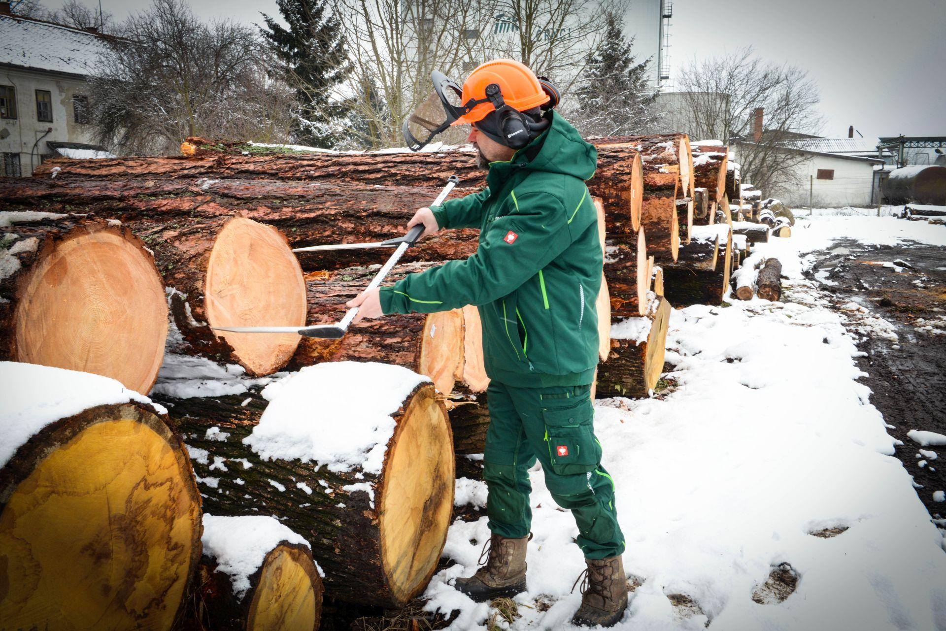 Lesno gozdarska zadruga -DSC_2926