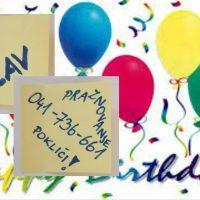 Praznovanje rojstnih dni, Maribor, rojstnodnevne zabave, Živ Žav, pijama party za otroke Maribor, animacijski program za najmlajše, Maribor 021