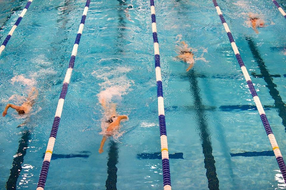 plavalna šola tinka tonka swimming-659903_960_720