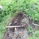 M. REBERNIK d.o.o. - Konzervirajoča obdelava tal, Kompostirna obdelava tal, Ohranitvena obdelava tal 008
