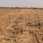 M. REBERNIK d.o.o. - Konzervirajoča obdelava tal, Kompostirna obdelava tal, Ohranitvena obdelava tal 047