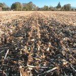 M. REBERNIK d.o.o. - Konzervirajoča obdelava tal, Kompostirna obdelava tal, Ohranitvena obdelava tal 049