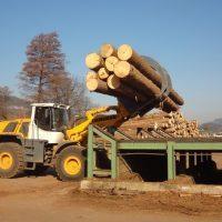 Stroji in oprema za razrez lesa Majer-Holz - Rampa za hlodovino rabljena