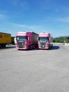 Thermo-transport-prevozi-Švica--14812968192
