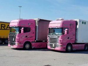 Thermo-transport-prevozi-Švica--14812968193