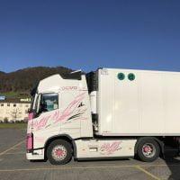 Thermo-transport-prevozi-Švica–14812970562--logo