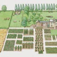 Vastu - znanje o naravnem urejanju prostora (hiše, doma, vrta) - 1531863316
