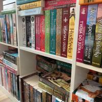 Spletna knjigarna